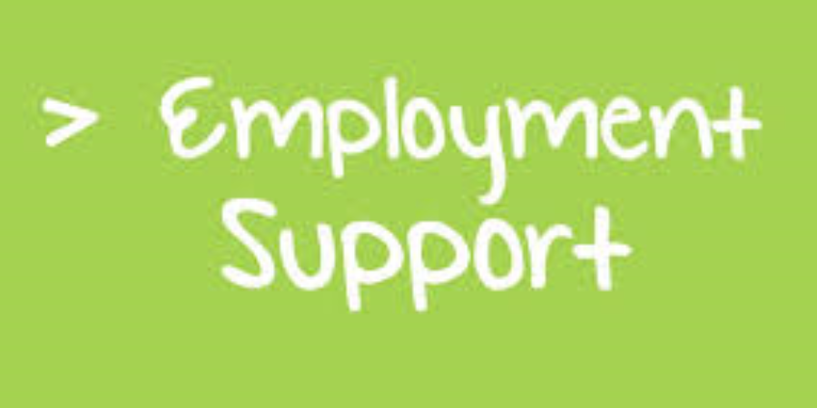 BMBC Employment Support Helpdesk